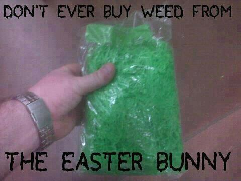 EasterBunnyWeed