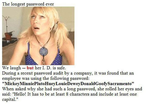 The Longest Password Ever